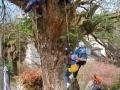 03 l'arbre à enfants